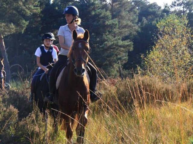 Arbonne Equitation balade à cheval en forêt